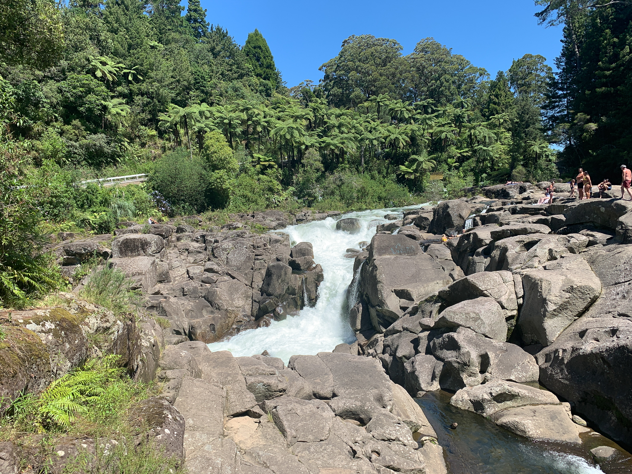 184: McLaren Falls (1)