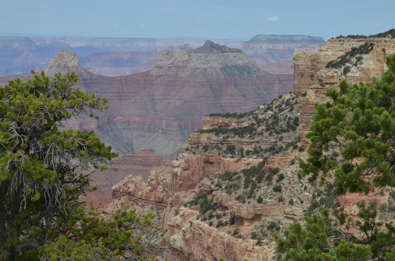 289: Canyon to Canyon